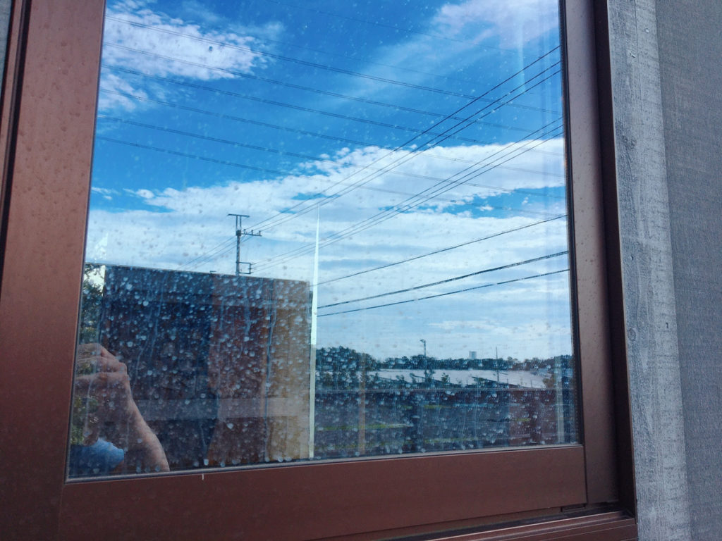 今日の窓掃除。